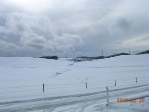 福島県 鮫川村 鹿角平観光牧場
